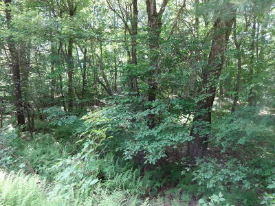 Luzerne County Residential Lots & Land For Sale: 13 Antler Ct.