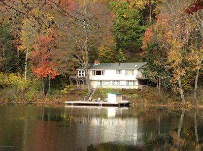 Susquehanna County Single Family Home For Sale: 452 Heart Lake Road