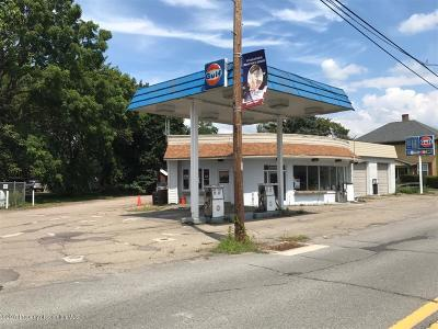 Wyoming County Commercial For Sale: 119 E Tioga St