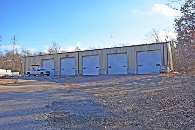 Luzerne County Commercial For Sale: 322 Rocky Road