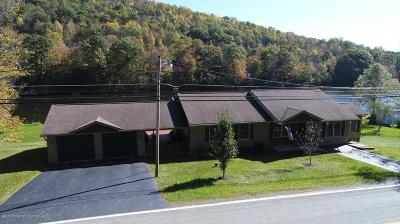 Tunkhannock Single Family Home For Sale: 314 Saddle Lake Road