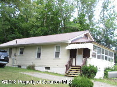 Wyoming County Single Family Home For Sale: 353 Valley Ln