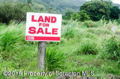 Lackawanna County Residential Lots & Land For Sale: Dorantown Rd