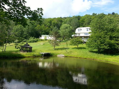 Susquehanna County Single Family Home For Sale: 371 Deer Lick Road