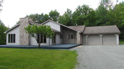 Susquehanna County Single Family Home For Sale: 1738 Pa-848