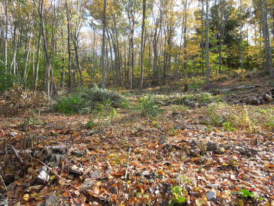 Wyoming County Residential Lots & Land For Sale: Shadowbrook Dr