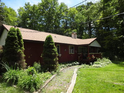Lackawanna County Single Family Home For Sale: 23 Shotgun Trail