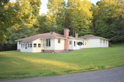 Susquehanna County Single Family Home For Sale: 850 Day Road