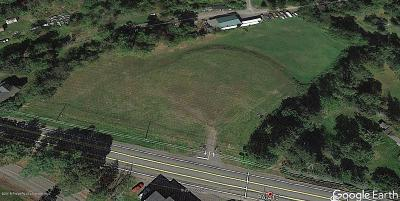 Luzerne County Residential Lots & Land For Sale: Rt. 415