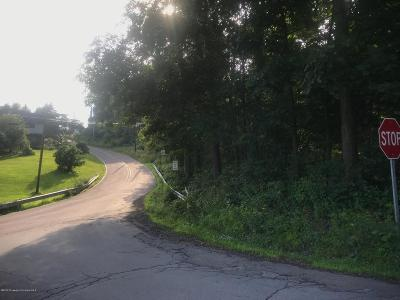 Luzerne County Residential Lots & Land For Sale: Peck & Marcy