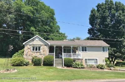Wyoming County Single Family Home For Sale: 347 Woods Dr