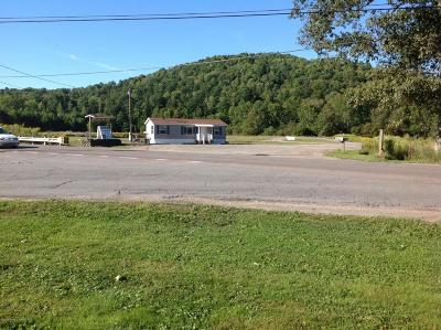 Susquehanna County Commercial For Sale: 3525 State Route 706
