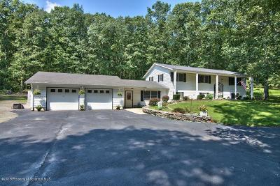 Wyoming County Single Family Home For Sale: 14 Thunderbird Trail