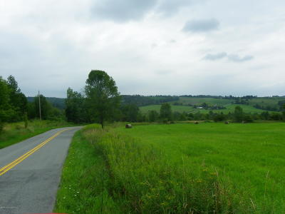 Meshoppen Residential Lots & Land For Sale: 5659 State Rte 3004