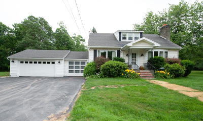 Luzerne County Single Family Home For Sale: 8 Blueberry Lane Buck Twsp