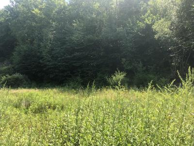 Susquehanna County Residential Lots & Land For Sale: 118 West Main Street