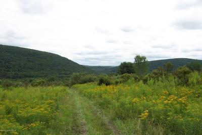 Susquehanna County Residential Lots & Land For Sale: State Road 2023
