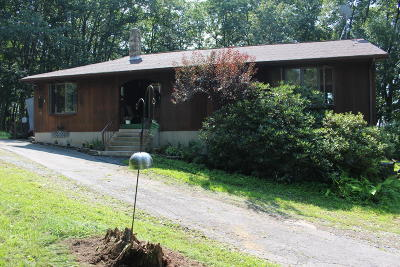 Clarks Summit Single Family Home For Sale: 1607 Newton Ransom Blvd.