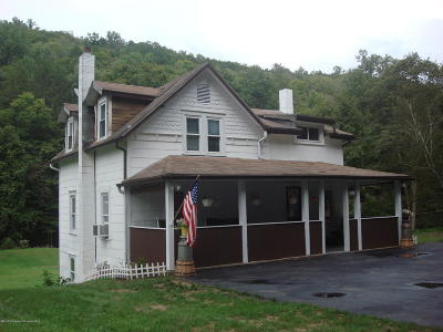 Wyoming County Single Family Home For Sale: 350 Leonards Creek Rd