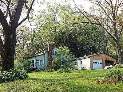 Susquehanna County Single Family Home For Sale: 3367 Brushville Road