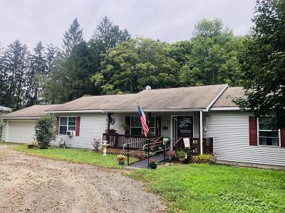 Susquehanna County Single Family Home For Sale: 580 Columbus Ave