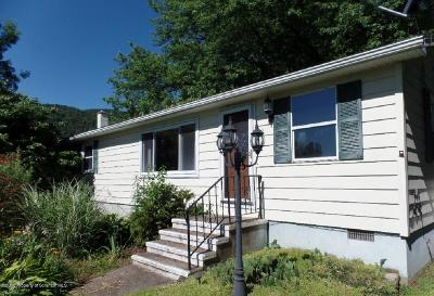 Tunkhannock Single Family Home For Sale: 3 Dendron Drive