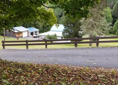 Wyoming County Single Family Home For Sale: 164 Carpenter Rd