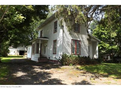 Susquehanna County Single Family Home For Sale: 1076 Route 858
