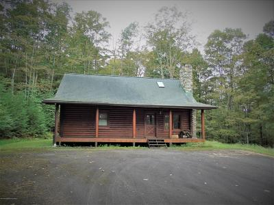 Luzerne County Single Family Home For Sale: 15 Murphy Lane