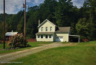 Susquehanna County Single Family Home For Sale: 1143 Randolph Road