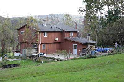 Wyoming County Single Family Home For Sale: 365 Carpenter Rd