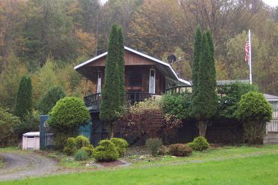 Susquehanna County Single Family Home For Sale: 5154 Three Lakes Road