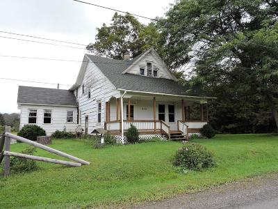 Bradford County Single Family Home For Sale: 509 Amish Dr