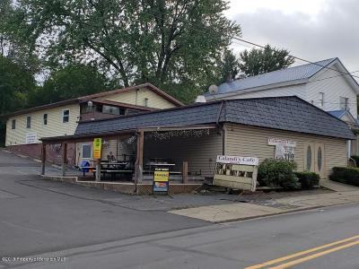 Lackawanna County Commercial For Sale: 30 Pike St