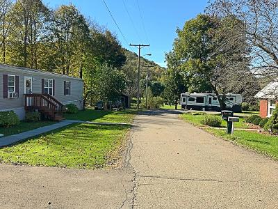 Susquehanna County Residential Lots & Land For Sale: 81 Petes Rd