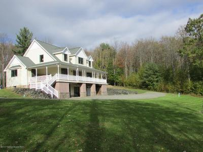 Susquehanna County Single Family Home For Sale: 927 Peck Hill Road