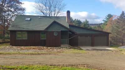 Susquehanna County Single Family Home For Sale: 2053 Germantown Rd