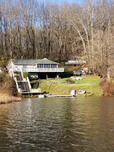 Susquehanna County Single Family Home For Sale: 132 Lakeview Rd