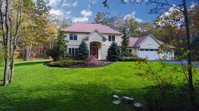 Luzerne County Single Family Home For Sale: 500 Sandspring Road