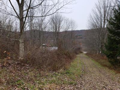 Susquehanna County Residential Lots & Land For Sale: New York Ave