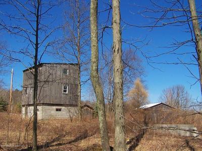 Susquehanna County Single Family Home For Sale: 1155 Keech Hill Road