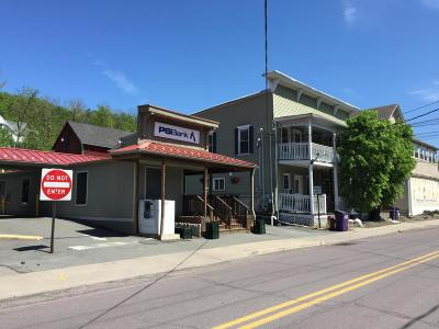 Wyoming County Commercial For Sale: 110 College Ave
