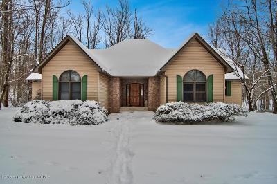 Lackawanna County Single Family Home For Sale: 9135 Valley View Drive