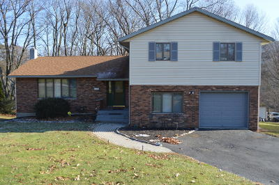 Lackawanna County Single Family Home For Sale: 166 Edgewood Dr