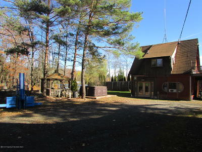 Susquehanna County Single Family Home For Sale: 934 Heart Lake Road
