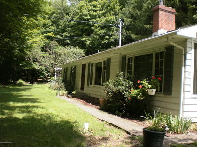 Susquehanna County Single Family Home For Sale: 109 Griffis Street