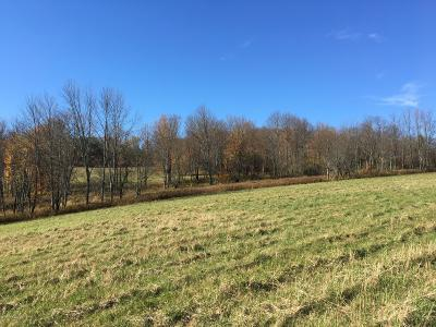 Susquehanna County Residential Lots & Land For Sale: Silver Creek Road