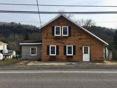 Wyoming County Single Family Home For Sale: 2626 Sullivans Trl