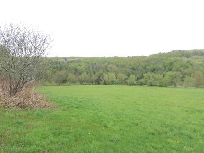 Susquehanna County Residential Lots & Land For Sale: Brozonis Road
