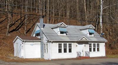 Wyoming County Single Family Home For Sale: 1953 Pa-29